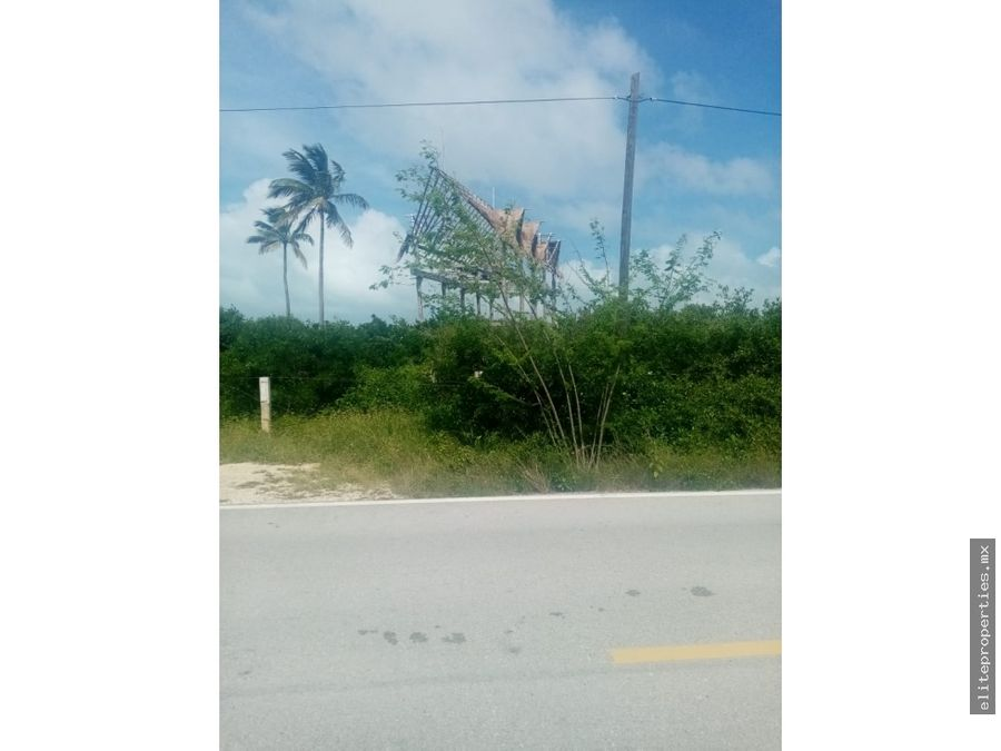 terreno de 120 has en yucatan