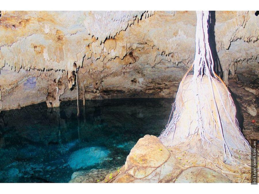 venta de 140 has con 10 cenotes en la riviera maya