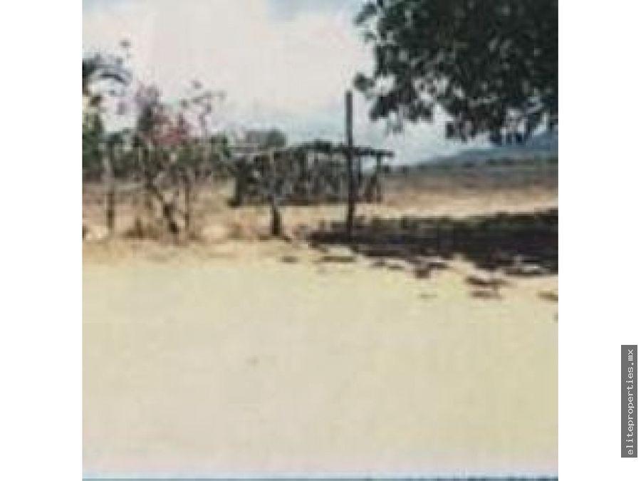 terreno de 277 has entre manzanillo y puerto vallarta