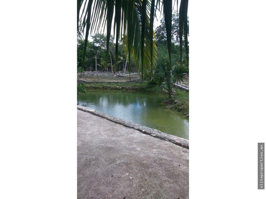 parcela de 108 mil m2 frente a aldea tulum