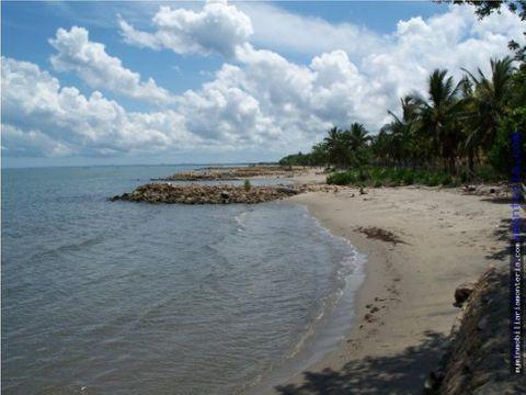 lote de playa en tolu para proyecto 13698 m2