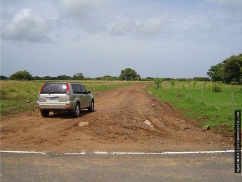 tierra para proyectos en pedasi