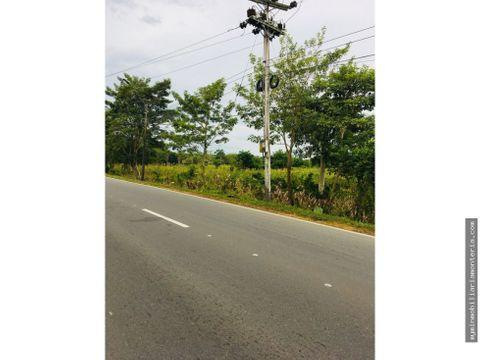 vende 1 hectarea a orilla de carretera