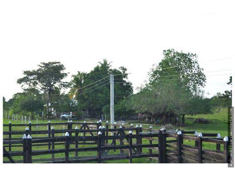 vende finca de 75 hectareas en tolu viejo