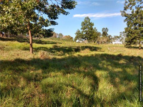 vende 16 hectareas via monteria planeta