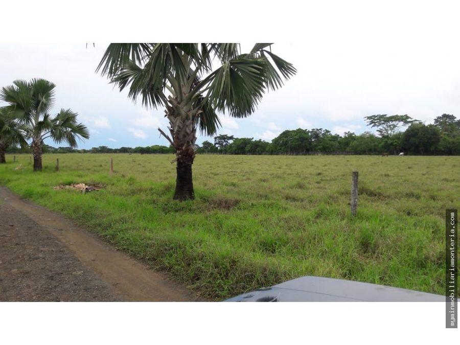 vende finca en san pelayo 750 hectareas