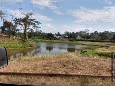 vende finca de 145 hectareas en canalete