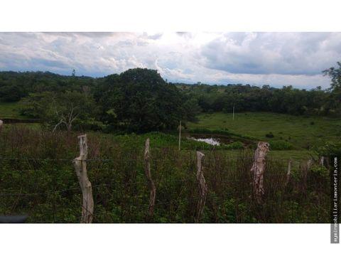 vende finca de 24 hectareas en sahagun