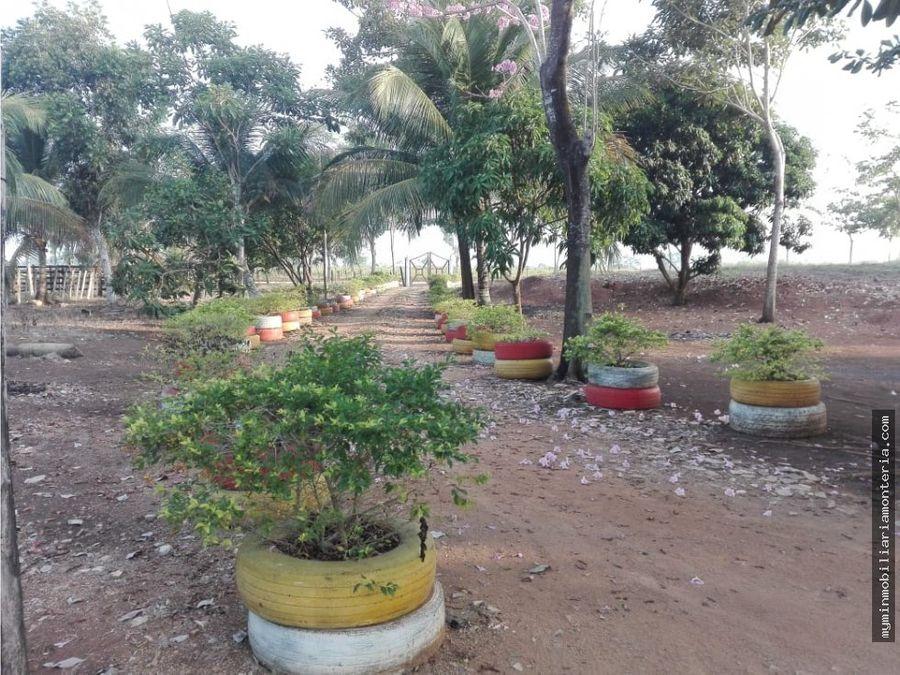 vende 75 hectareas en el kilometro 15