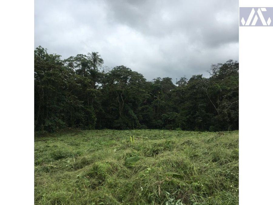 san miguel de los bancos quinta las orquideas