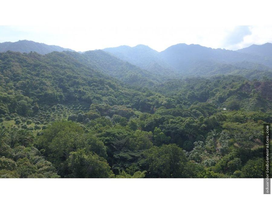 se venden lotes en tigrera via a minca santa marta colombia