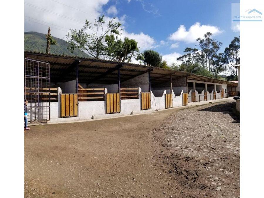 venta hacienda ganadera machachi 2500000