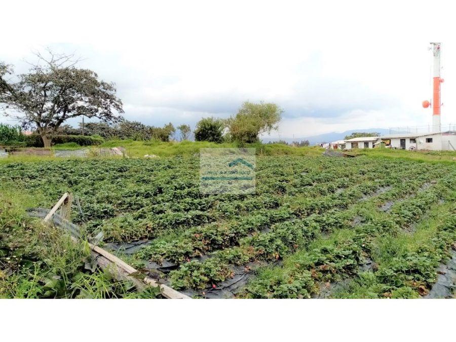 terreno en venta yaruqui pie del carretero via al quinche