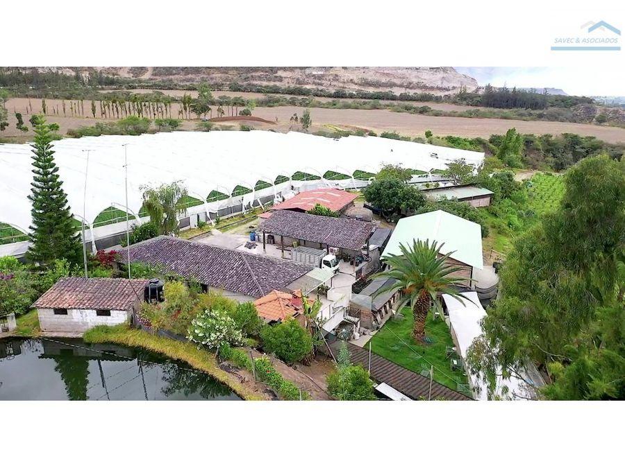 venta hacienda 20 ha urcuqui ibarra 1800000