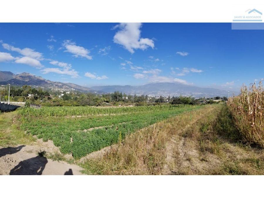 venta terreno 12700m2 a 150 tumbaco ruta viva