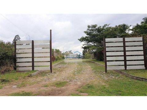 venta terreno 2520 m en sector puembo 330000