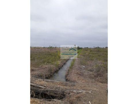vendo terreno secor la cuca 8 hectareas
