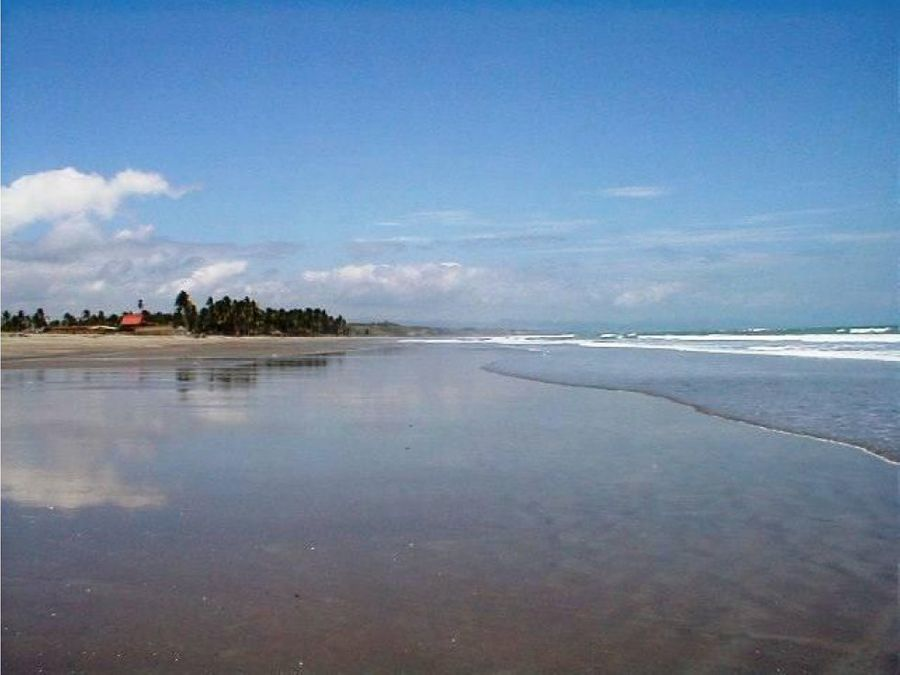 venta 3 hectareas cojimies 750000