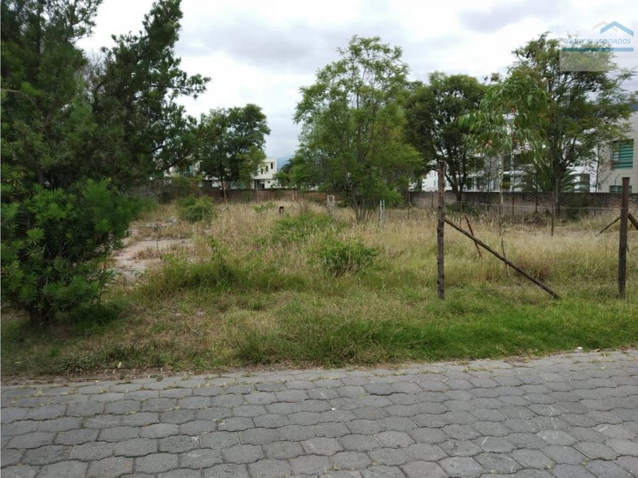 terreno en ventarentacumbaya 2000