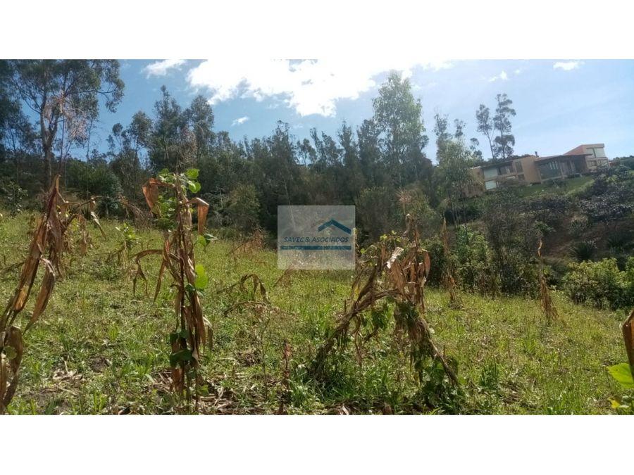 terreno en venta ilalo tumbaco 55m2 total 82500