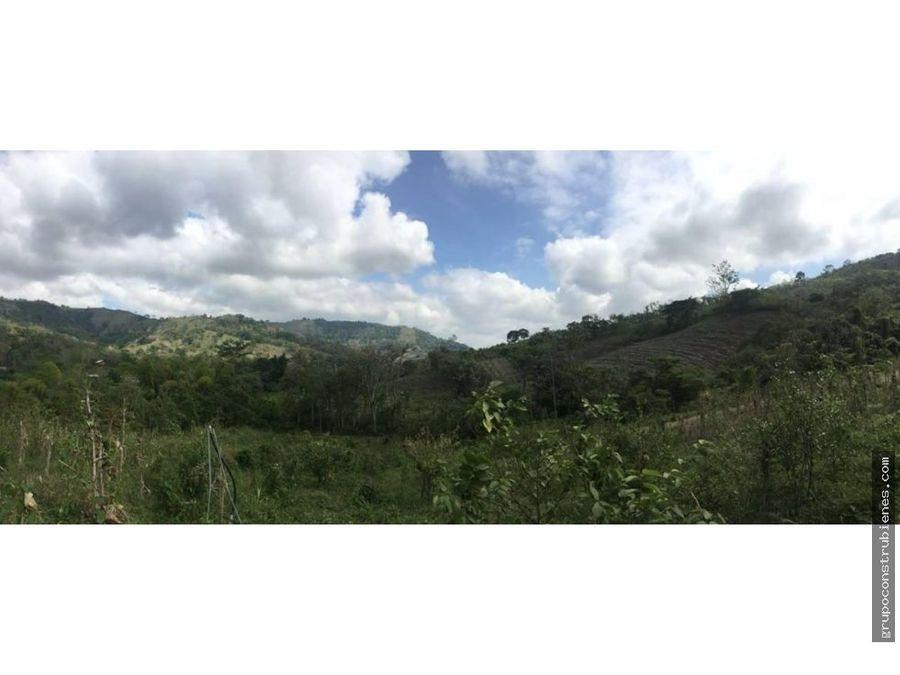 finca de 24 hectareas en manabi