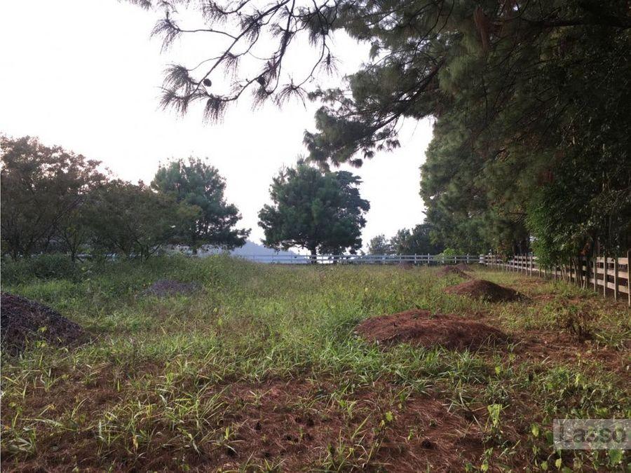 terreno en medio de la naturaleza santa elena