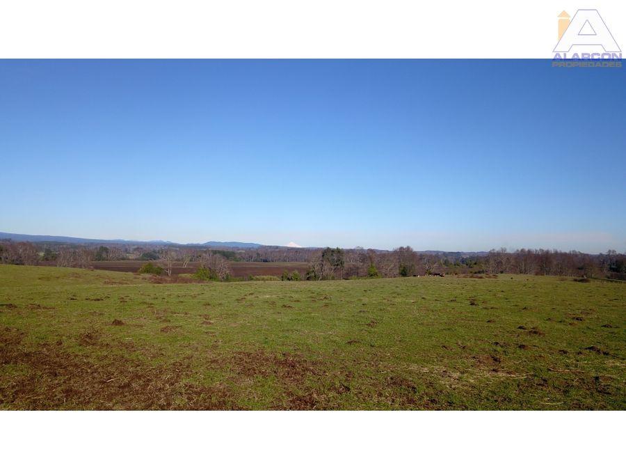 hermoso campo de 17 hectareas