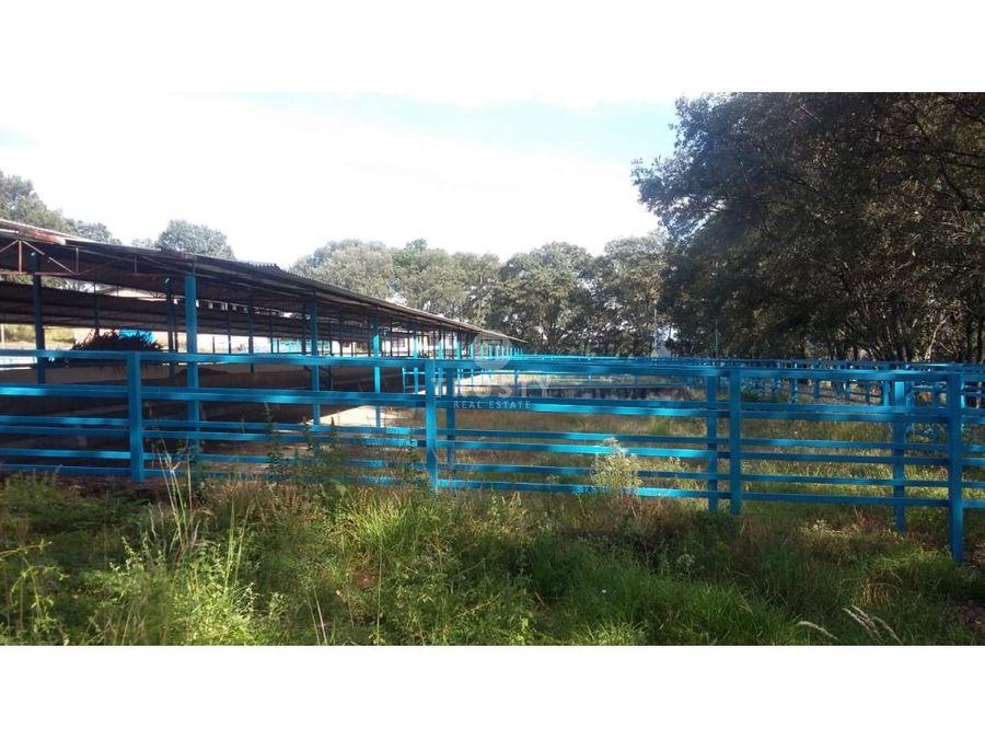 rancho zacapu