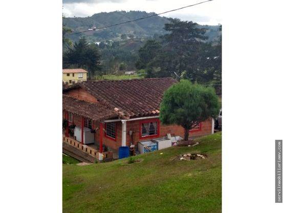 vendo finca 12000mt2 enea guarne 800