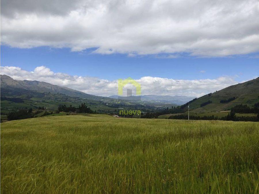 de venta 5 hectareas en chaupi cayambe