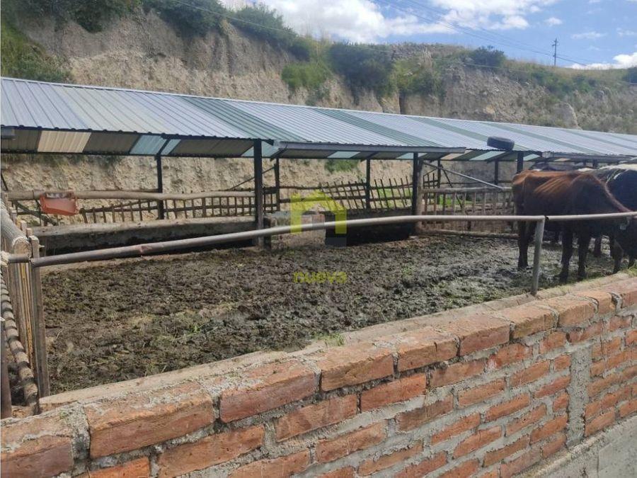 venta de 6 hectarias via guachala en cayambe