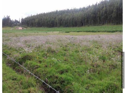 terreno de 3 hectareas en sto domingo cayambe
