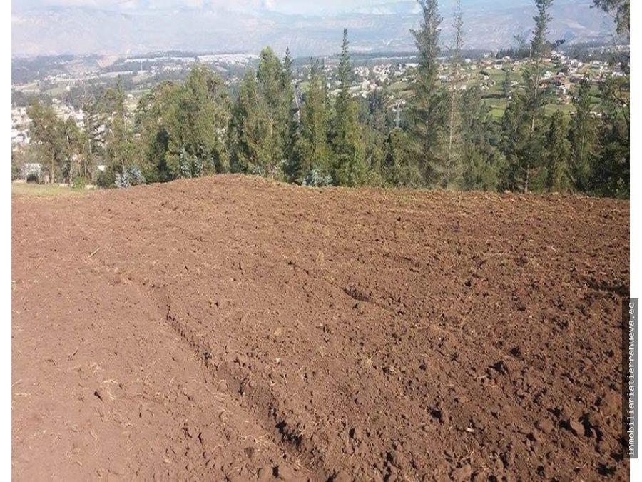 de venta 3 hectareas en ascazubi cayambe