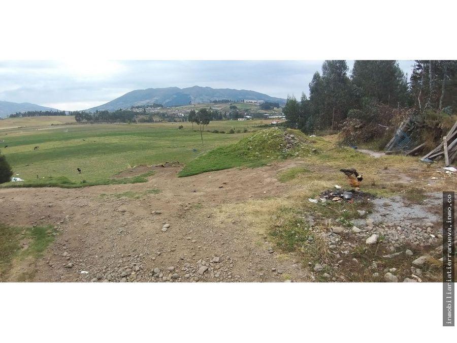 en venta 5 hectareas planas en ayora cayambe
