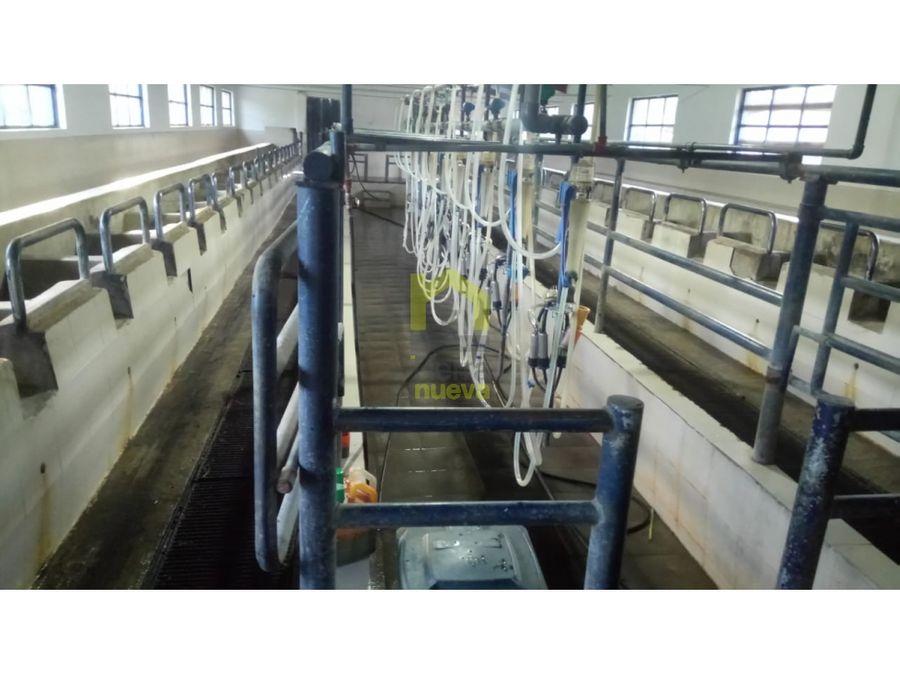 hacienda ganadera en salinas de ibarra