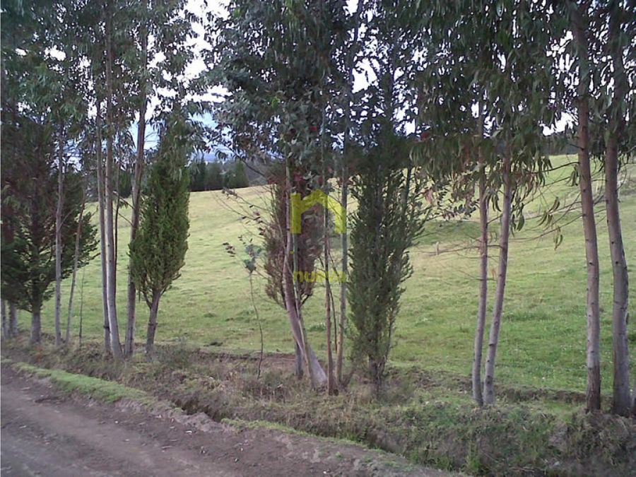 finca de 22has para ganaderia o agricultura de rosas en cayambe
