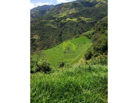 hacienda de 87 hectareas en otavalo via selva alegre