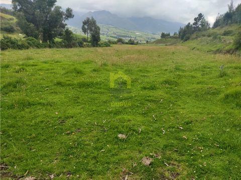 venta de 22 hectareas en cayambe