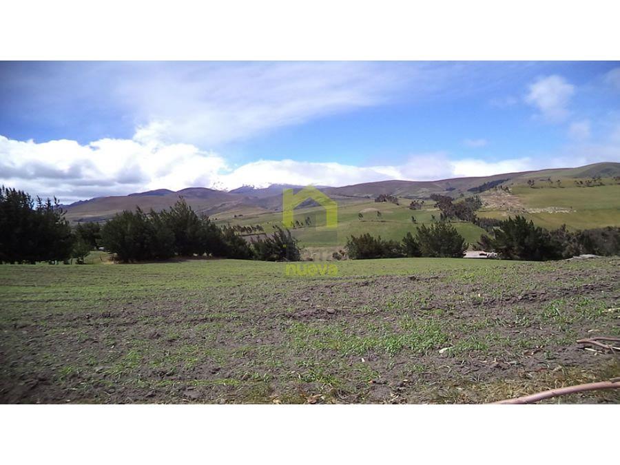 hermosa hacienda de 100 hectareas a 30 minutos de cayambe