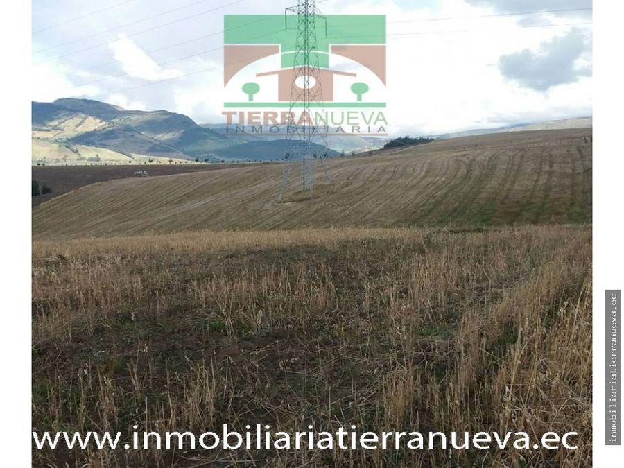 en venta 5 hectareas en llanos de alba