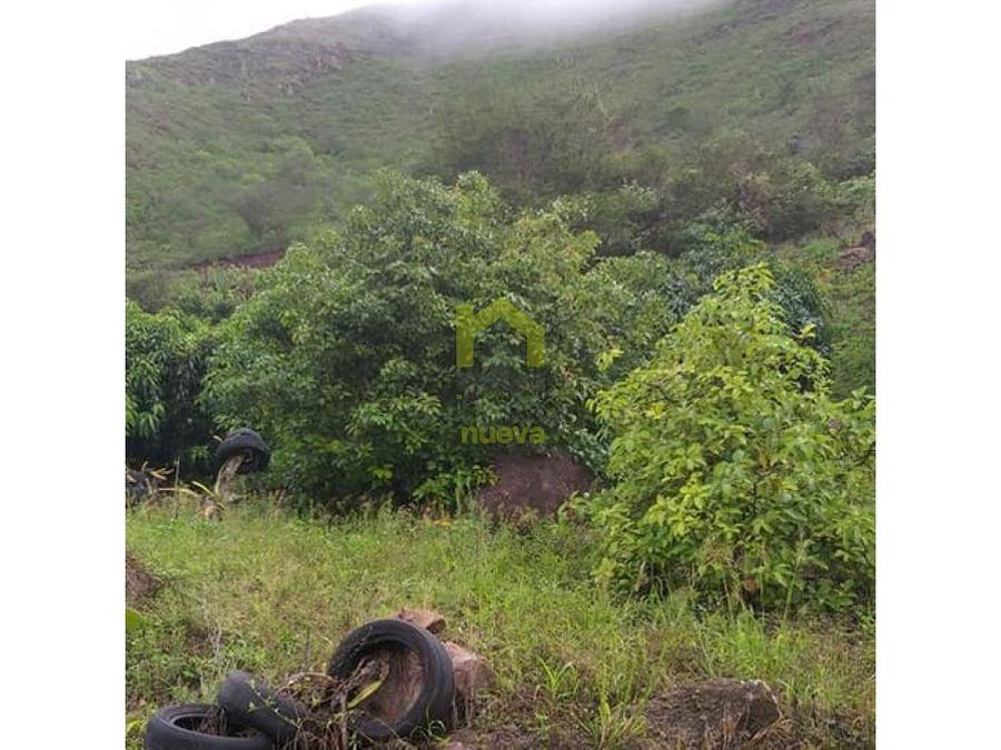vendo 15 hectareas en imbabura sector naranjal