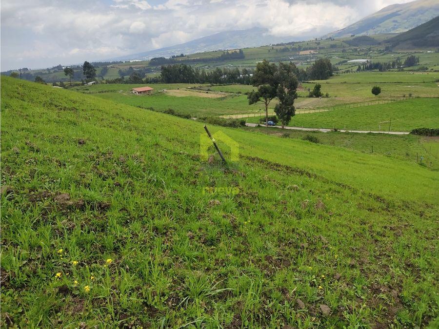 venta de 3 hectareas en cariacu cayambe