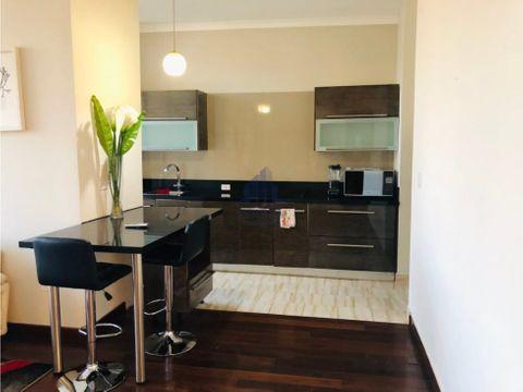 alquiler apartamento ph denovo