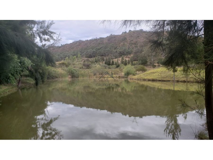 terreno en venta santa teresa tiloxtoc