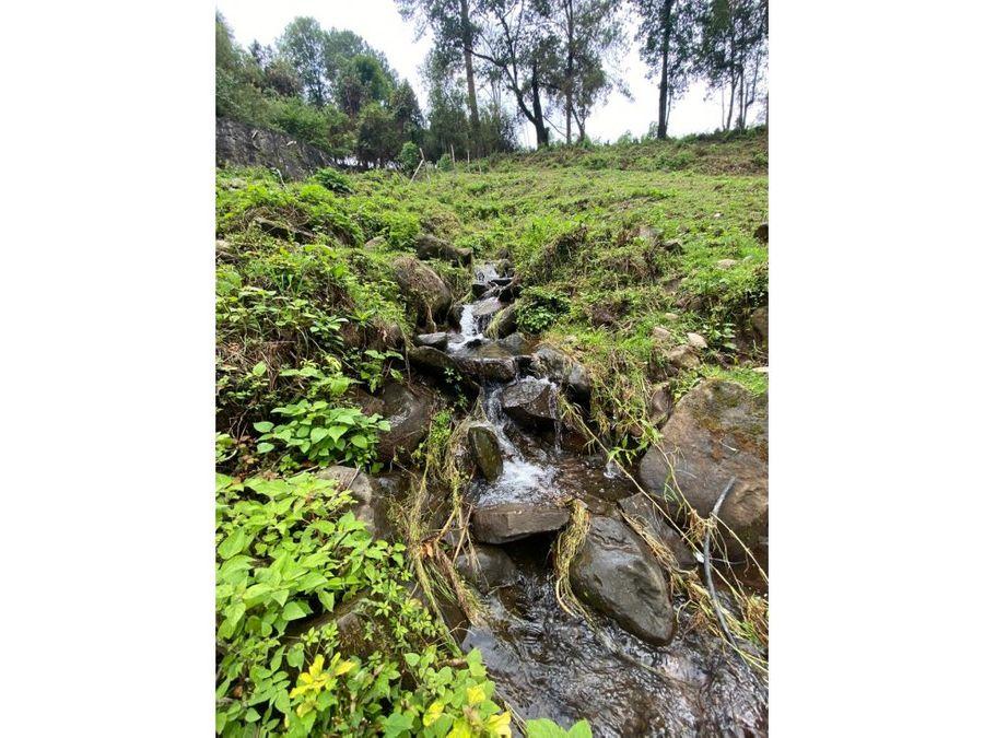 terreno con manantial y hermoso entorno