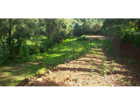 terreno boscoso con rio