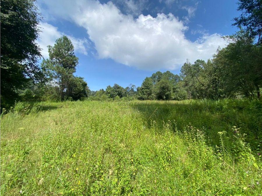 terreno con entorno de bosque y pequeno estanque