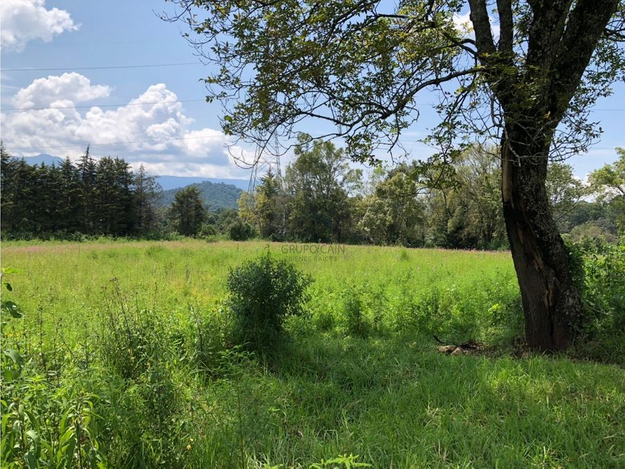 excelente terreno en venta en los alamos valle de bravo