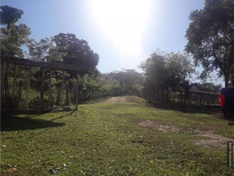 finca en venta en nirgua de 2150 hectareas
