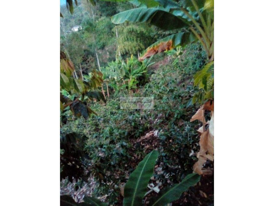 finca en venta en monteloro tulua